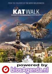 Katwalk poster, © 2020 M&N Film Distribution