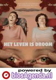 Het Leven Is Droom poster, copyright in handen van productiestudio en/of distributeur