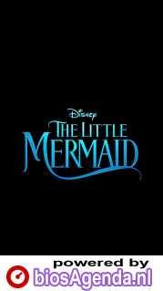 The Little Mermaid poster, copyright in handen van productiestudio en/of distributeur