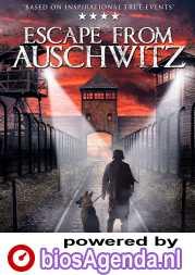The Escape from Auschwitz poster, copyright in handen van productiestudio en/of distributeur