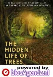 The Hidden Life of Trees poster, © 2020 Paradiso