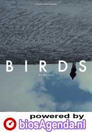 Birds (or How to Be One) poster, copyright in handen van productiestudio en/of distributeur