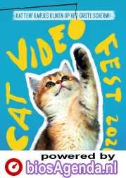 CatVideoFest 2021 poster, © 2021 Cinema Delicatessen