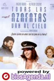 Poster van 'Todas Las Azafatas van al Cielo' © 2002 Cinemien