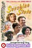 Poster van 'Sunshine State' © 2002 Columbia TriStar