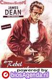poster 'Rebel Without a Cause' © 1955 Warner Bros.