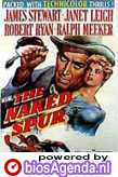 poster 'The Naked Spur' © 1953 Metro-Goldwyn-Mayer (MGM)