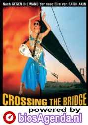 Poster Crossing the Bridge
