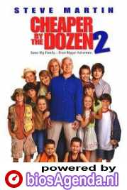 Poster Cheaper by the Dozen 2