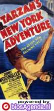Poster Tarzan's New York Adventure