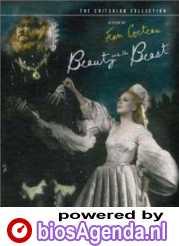 Dvd-hoes La belle et la bête