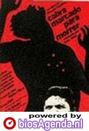 Poster Cabra Marcado Para Morrer